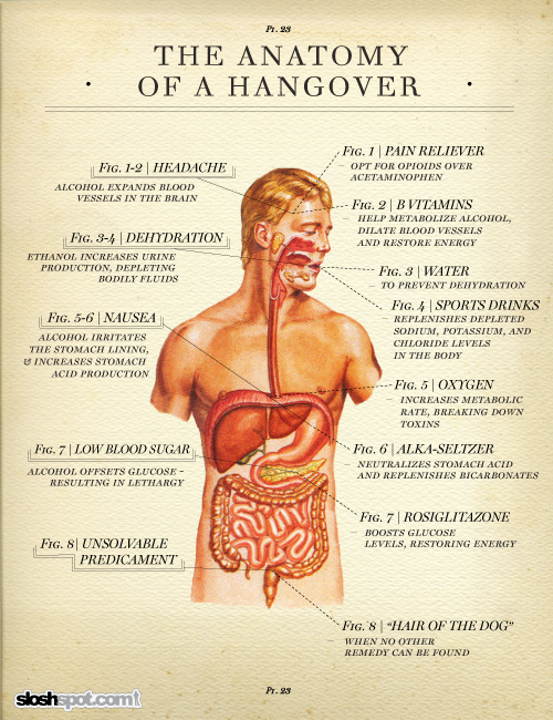 Drink Water To Cure Hangover